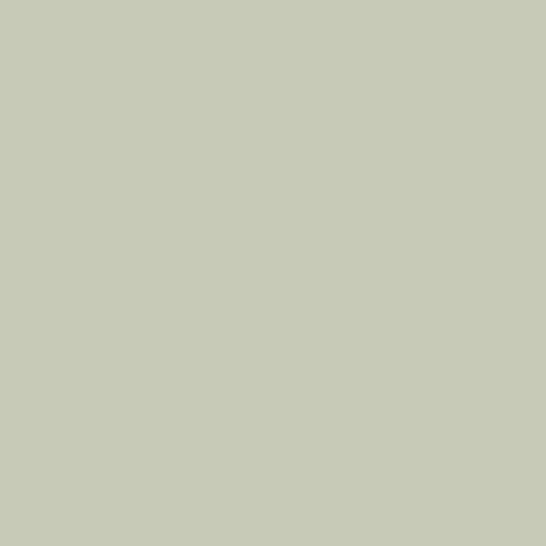Color Swatch - Annapolis Gray