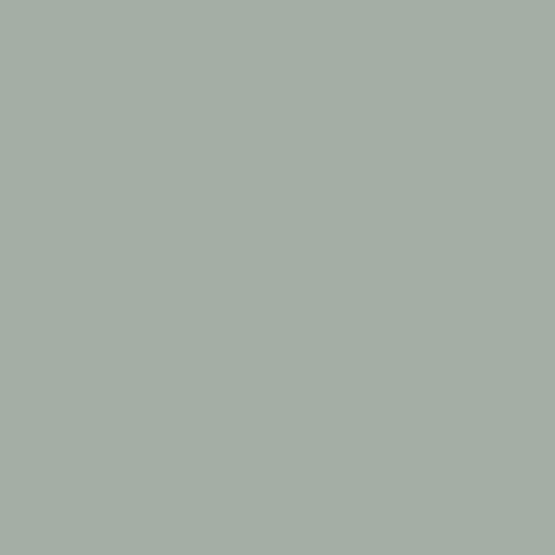 Color Swatch - Platinum Gray