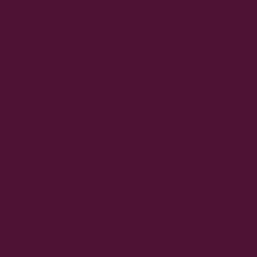Color Swatch - Burgundy