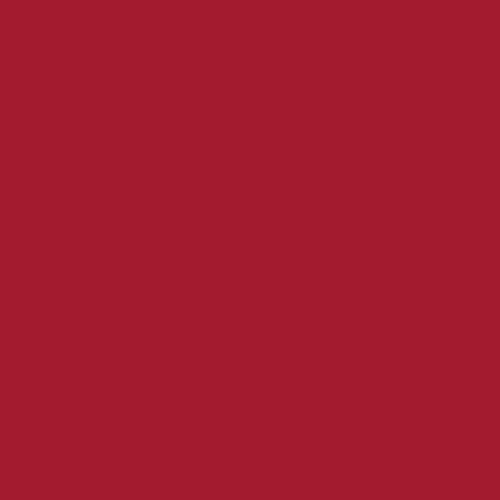 Color Swatch - Patriot Red