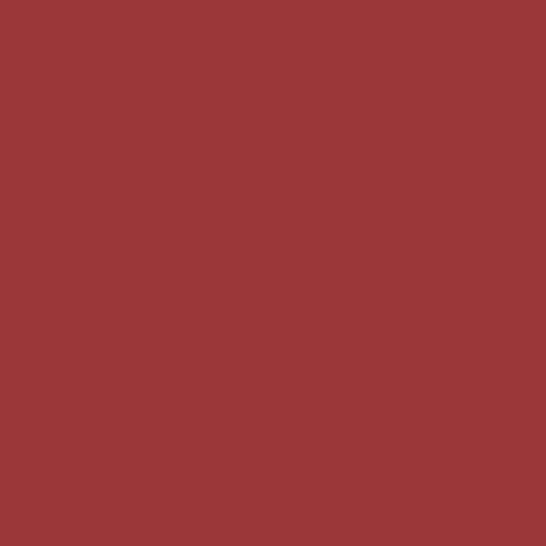 Color Swatch - Red