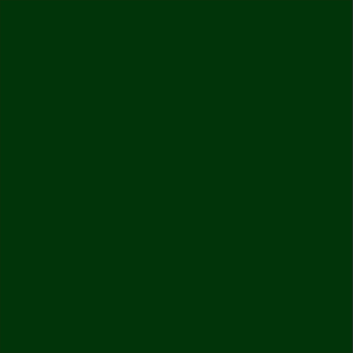 Color Swatch - Evergreen